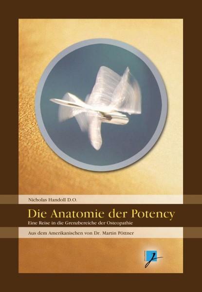 Die Anatomie der Potency