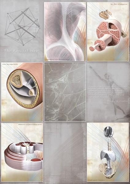 The Fascial Web (1) - 9 Themen