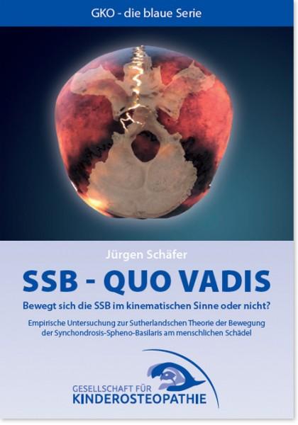 SSB - Quo vadis?